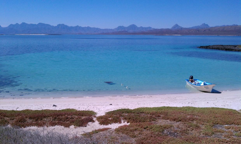 islanddaytrip.jpg